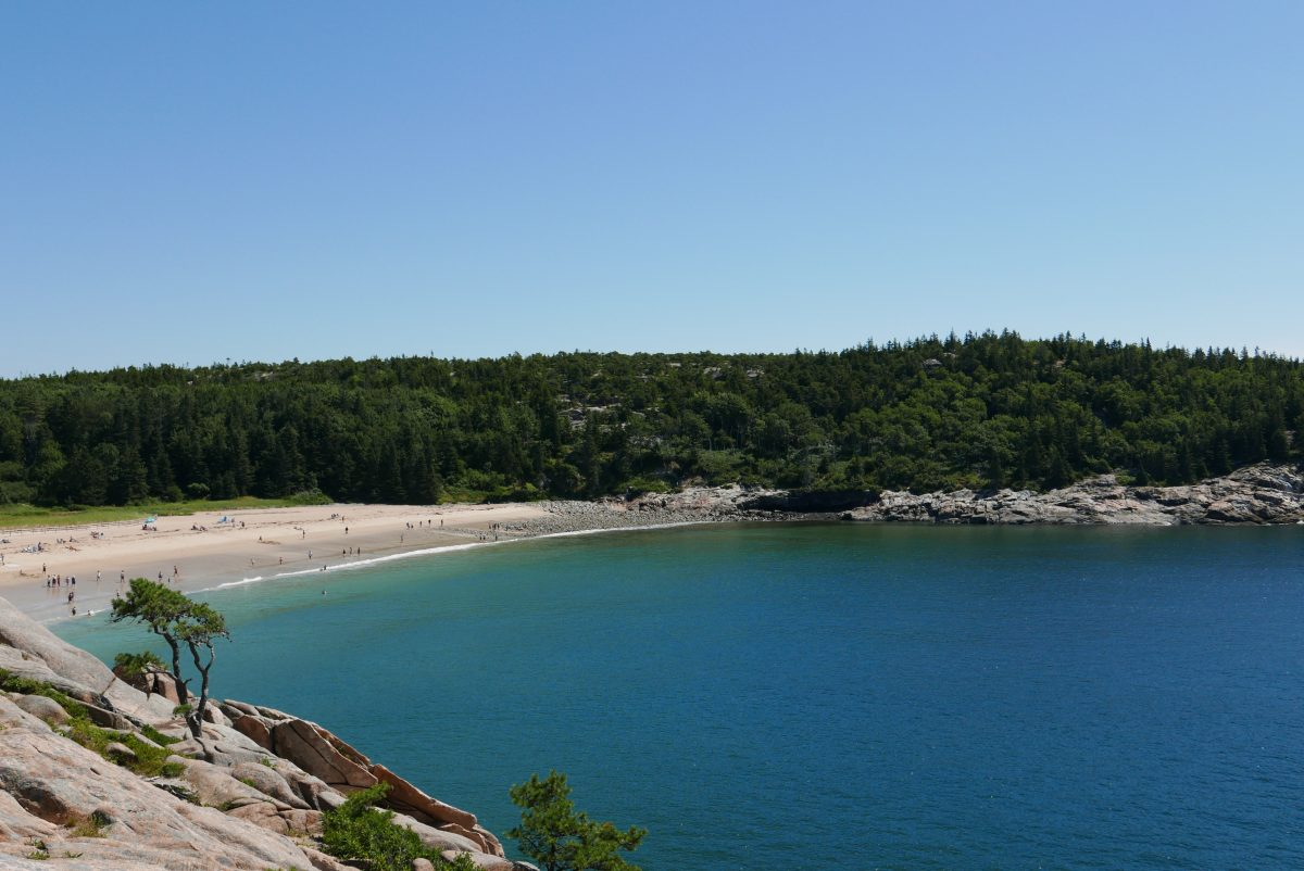 Ocean Path Trail Acadia