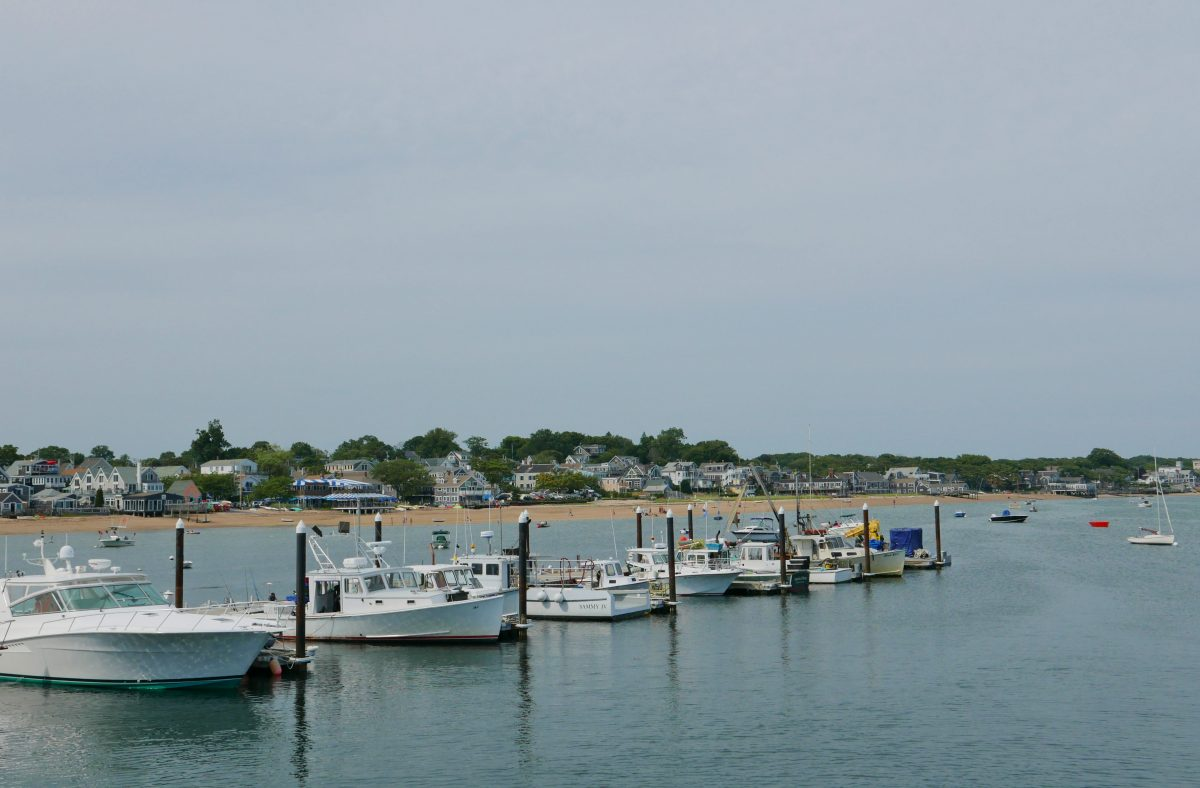 Cape Cod Travel with Anda