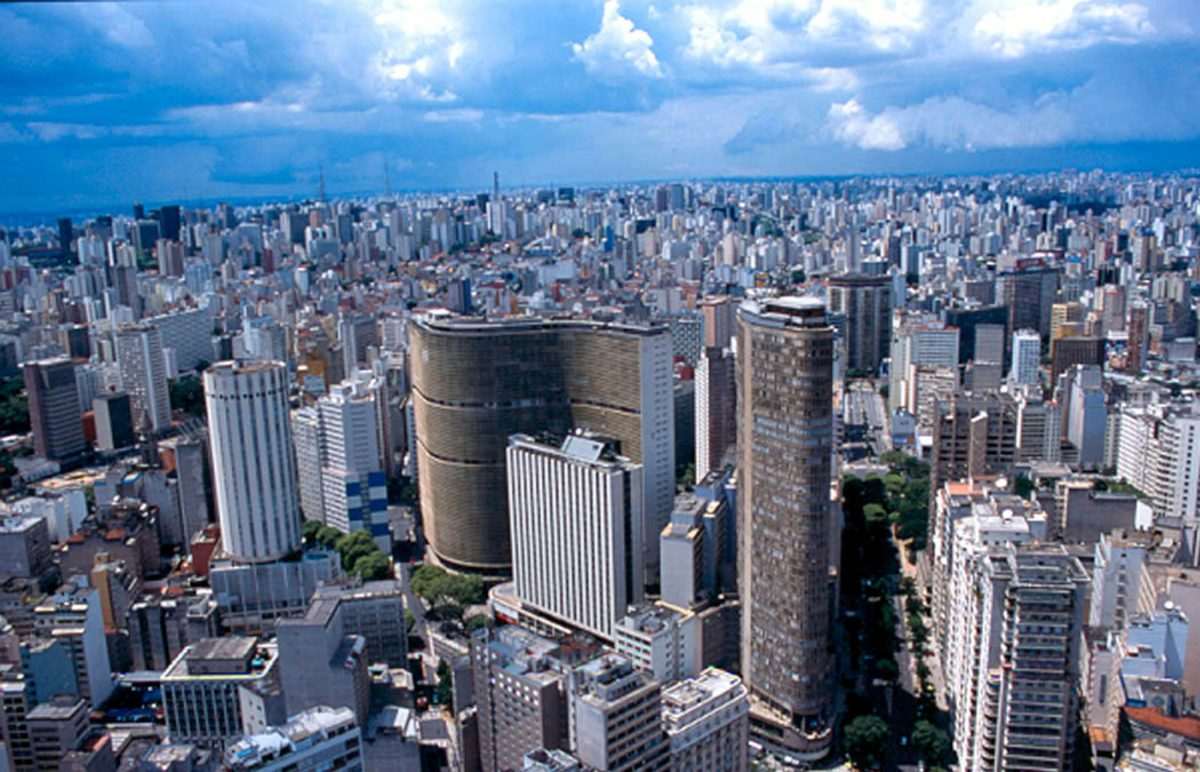 Sao Paulo Jungle